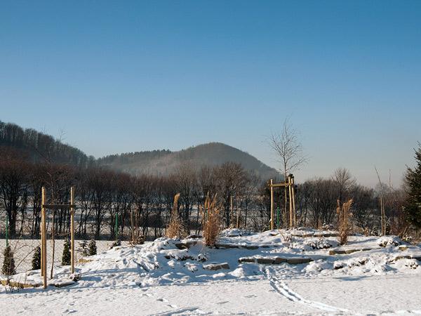 Zdjęcie - Jednak zima przyszła