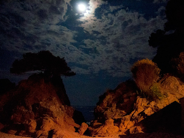 Zdjęcie - Księżyc