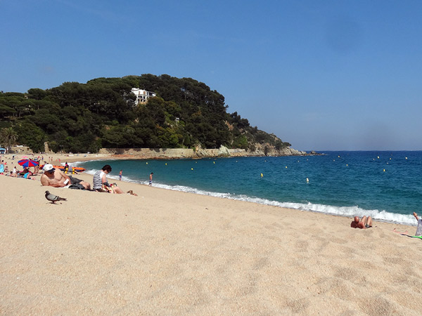 Lloret de Mar, Playa De Fenals