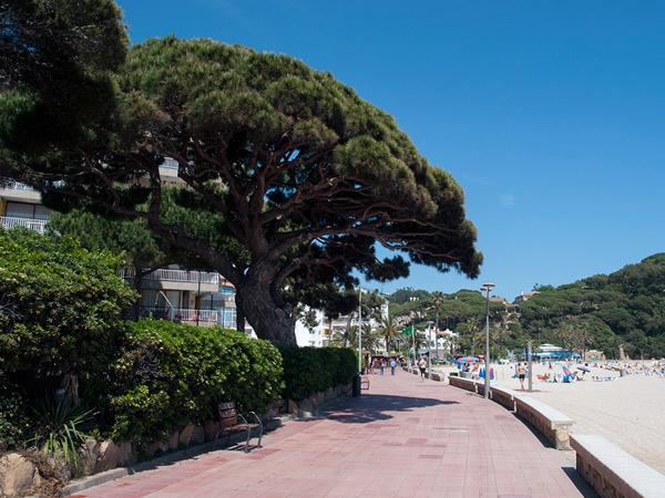 Deptak przy plaży De Fenals