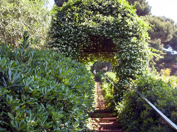 Ogrody św. Klotyldy