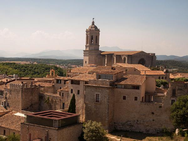 Widok na katedrę z murów miejskich