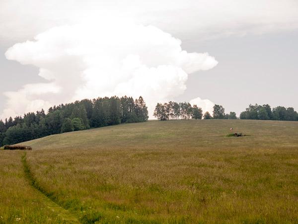 Zdjęcie - Pole z bunkrami